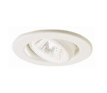 Picture of Metal Swivel Down Halogen Light (5.12060 WH)