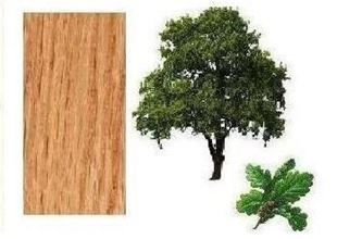 Picture for category Oak