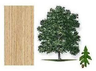 Picture for category White Oak