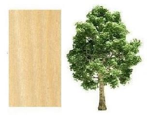 Picture for category Poplar